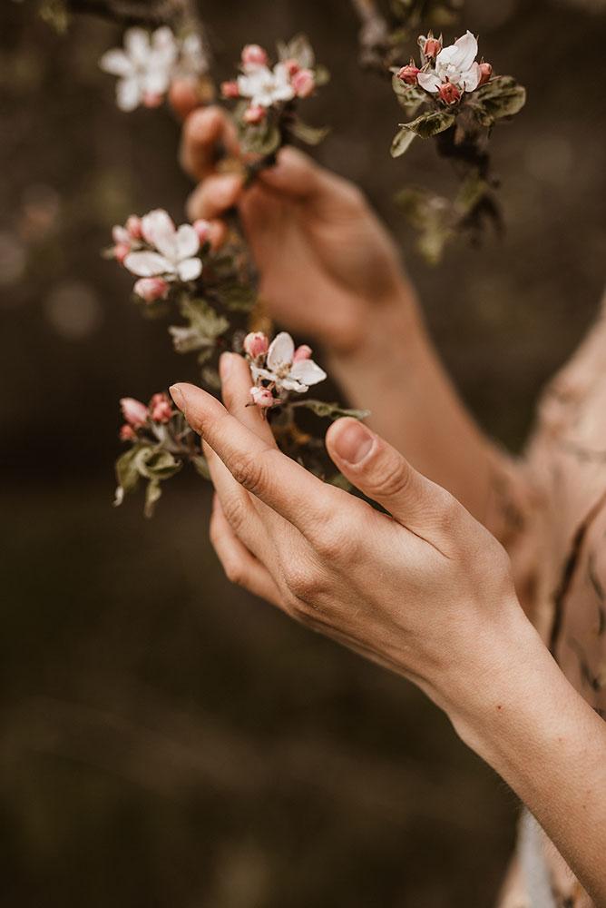 Blumen Frühling Detail Storytelling
