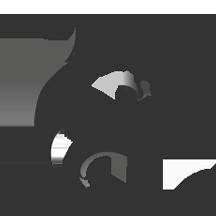 Wolf of SEO Logo Design